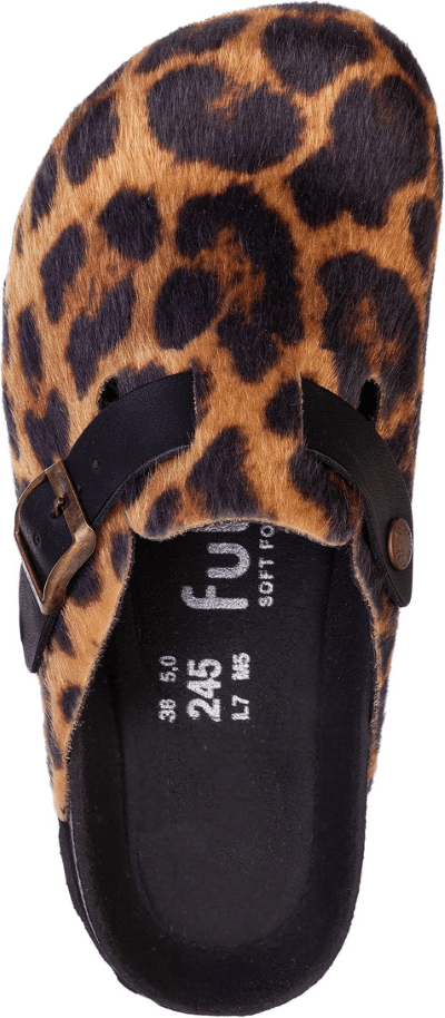 Jack Leopard